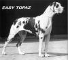 EASY Topaz - CIB, Ch.Lux, A, VDH